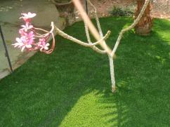Artificial grass for sale in Cochin