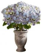 Flower Vase With Beautiful Artificial Flowers