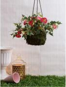 Add more freshness in your balcony with hanging planters