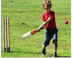 Cricket Turf Manufacturers in Bangalore - Toys and games