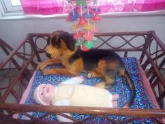 Baby Craddle /Jhula (Cane made) in Excellent Condition for Sale