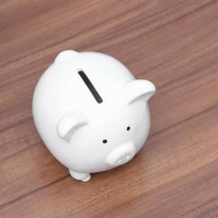 Piggy Bank in cute design