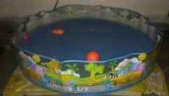 Splash Pool For Little Kids