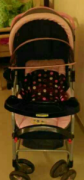 Stroller Available In Low Price