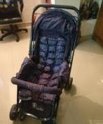 Adjustable Stroller Available