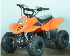 80cc junior ATV with automatic engine tubeless tyres