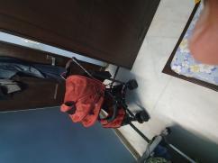 stroller bought in 2019