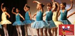 Ballet classes in Paschim Vihar
