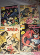 Rarely used raj comics for sale