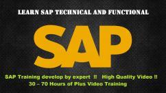 SAP VIDEO TUTORIAL