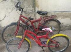2 Cycles Available
