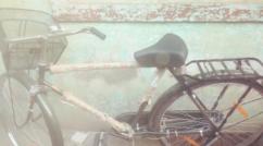 Brand New Avon Bicycle