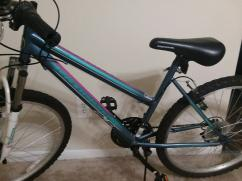 Ladies pink and blue roadmaster mountain bike