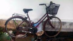 Lady Bird Cycle In Very Good Condition
