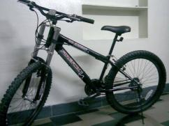 Bicycle In Very Cheap And Best Price Available