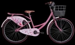 Less Used Lady Bird Cycle Available