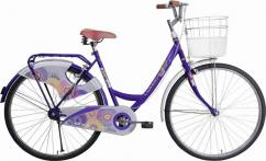 Used Lady Bird Cycle Available