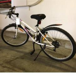 Very Great Maintained Cycle In Running Condition