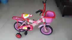 Pink in color cycle for kids