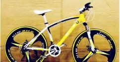 Bmw sleek cycle with shimano 21 gears