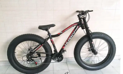 Fat 5 inch tyre cycle