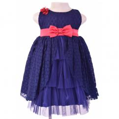 Faye Navy Lace Party Dress