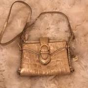 Ladies Bag In Golden Colour