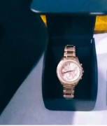 Fossil premium watch