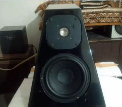 Wilson audio bookshelf speaker.