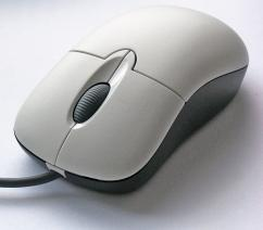 Gently Used Mouse In Fabulous Condition