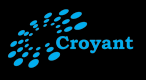 Croyant Software Technologies Pvt Ltd