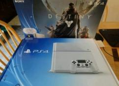 Taco Bell GOLD PlayStation 4
