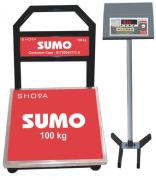 Digital Weighing Scale 100kg with 1year Guarantee