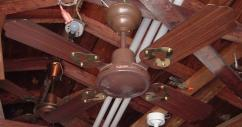 Branded Ceiling Fan In Rarely Used Condition