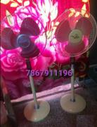 Orient 2 iron fan