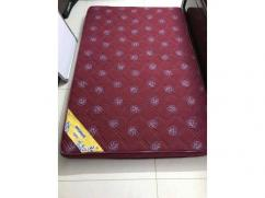 Branded Sleep well Mattress available