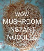 Dry oyester mushroom