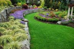 Landcaping works & services / Korean grass / Korean carpet lawn