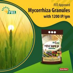 Environment Friendly Mycorrhizae By Peptech - Agriculture, forestry