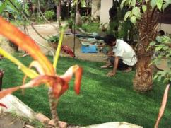 Imported artificial grass for indoor/outdoor/football facility