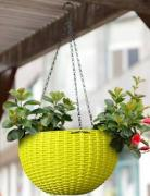 Hanging pot for just Rs 109