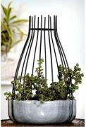 Get ultimate offer on outdoor plant pots