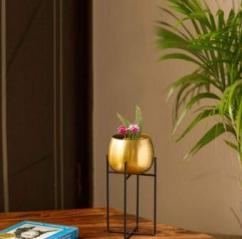 Quickrycart Online Garden Store , Garden Items Online