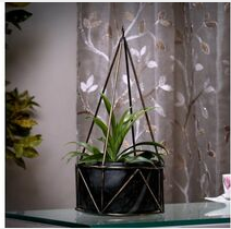Hanging Pots at best prices