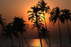Serviced Apartments in Goa from Sunshine Holidays