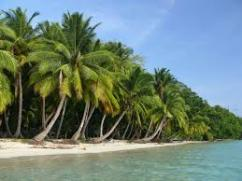 Port Blair Havelock Tour Packages