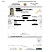 Dubai tourist visa for 14 Days - Rs 6212
