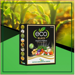 Eco Black Potassium Humate Peptech Bioscienes Ltd  Agriculture  forestry