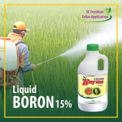 Liquid Boron Fertilizer To Enhance Crop Production
