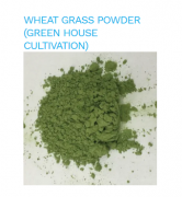 WHEAT GRASS POWDER (GREEN HOUSE CULTIVATION)